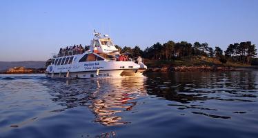 Excursión Rías Baixas con paseo en catamarán
